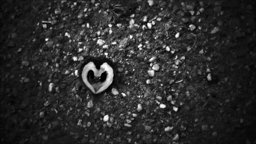 FUJI BEW ORIG W - screencast of film VIDEO PROJECTS IX afternoon walk 18-04-15 --- Heart on the Path